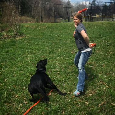 Playing Retrieve with Lilly during a private session.